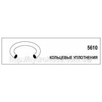 Кольцевое уплотнение для фланца SAE, 5610-02