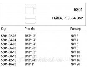 Гайка, резьба BSP, 5801